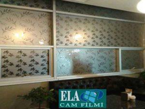 ela-cam-filmi-desenli-cam-filmleri-2