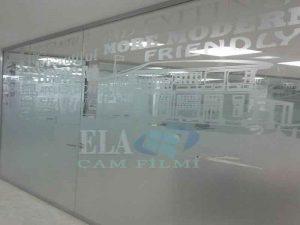 ela-dekoratif-cam-filmleri-uygulama-4